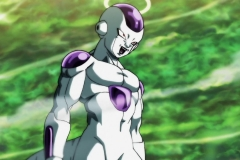 Dragon Ball Super Épisode 116 (15)