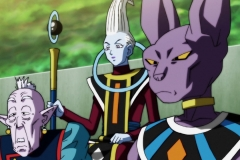 Dragon Ball Super Épisode 116 (21)