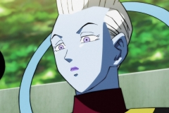 Dragon Ball Super Épisode 116 (22)