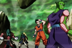 Dragon Ball Super Épisode 116 (41)