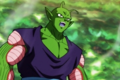 Dragon Ball Super Épisode 116 (44)
