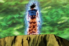 Dragon Ball Super Épisode 116 (5)