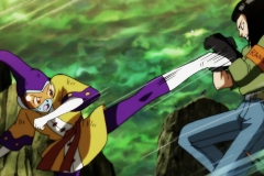 Dragon Ball Super Épisode 117 (101)