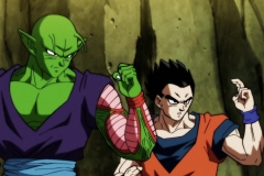 Dragon Ball Super Épisode 117 (11)