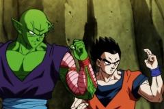 Dragon Ball Super Épisode 117 (11)
