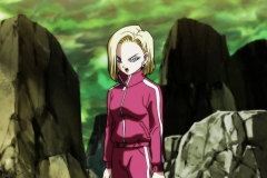 Dragon Ball Super Épisode 117 (114)
