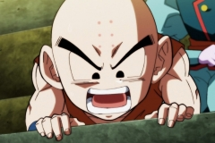 Dragon Ball Super Épisode 117 (146)