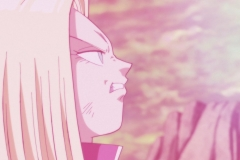 Dragon Ball Super Épisode 117 (188)