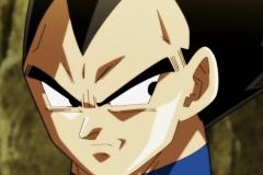 Dragon Ball Super Épisode 117 (21)