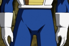 Dragon Ball Super Épisode 117 (22)