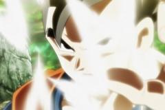 Dragon Ball Super Épisode 117 (270)