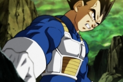 Dragon Ball Super Épisode 117 (5)