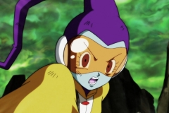 Dragon Ball Super Épisode 117 (76)