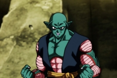 Dragon Ball Super Épisode 117 (8)