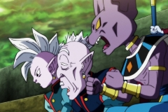 Dragon Ball Super Épisode 117 (87)