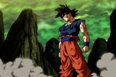 Dragon Ball Super Épisode 118 (14)