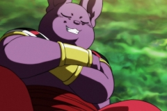 Dragon Ball Super Épisode 118 (16)
