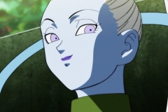 Dragon Ball Super Épisode 118 (17)