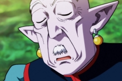 Dragon Ball Super Épisode 118 (26)