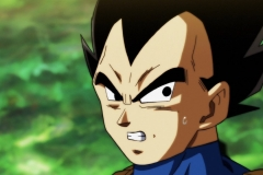 Dragon Ball Super Épisode 119 (50)