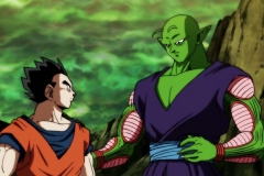 Dragon Ball Super Épisode 119 (59)