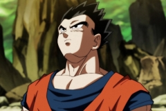 Dragon Ball Super Épisode 120 (11)