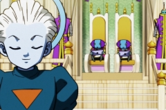 Dragon Ball Super Épisode 120 (3)