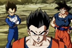 Dragon Ball Super Épisode 120 (6)