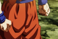Dragon Ball Super Épisode 122 (37)