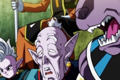 Dragon Ball Super Épisode 123 (9)