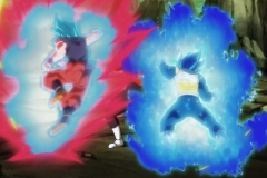 Dragon Ball Super Épisode 124 (15)