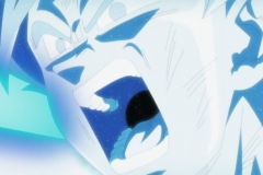 Dragon Ball Super Épisode 124 (32)