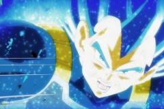 Dragon Ball Super Épisode 125 (5)