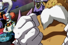 Dragon Ball Super Épisode 129 (17)