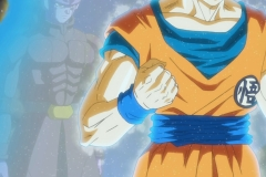 [DS] Dragon Ball Super 070 [1080p].mkv_snapshot_23.11_[2016.12.11_04.01.32]