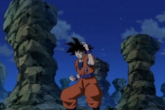 [HorribleSubs] Dragon Ball Super - 72 [480p].mkv_snapshot_03.54_[2016.12.25_03.52.56]