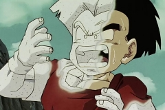 [HorribleSubs] Dragon Ball Super - 76 [480p].mkv_snapshot_05.10_[2017.01.29_02.34.53]