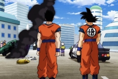 Dragon Ball Super Épisode 84 (15)