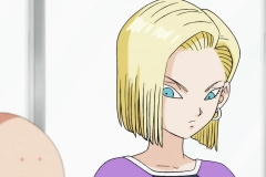 Dragon Ball Super Épisode 84 (23)