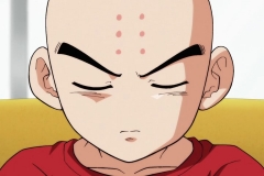 Dragon Ball Super Épisode 84 (25)
