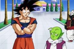 Dragon Ball Super Épisode 86 (7)