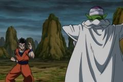 Dragon Ball Super Épisode 88 (17)