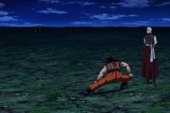 Dragon Ball Super Épisode 90 (19)