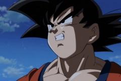Dragon Ball Super Épisode 95 (12)