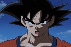 Dragon Ball Super Épisode 95 (13)