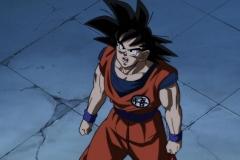 Dragon Ball Super Épisode 95 (51)