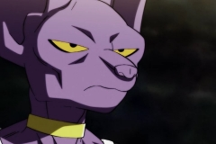 Dragon Ball Super Épisode 95 (303)