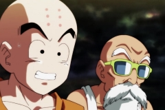 Dragon Ball Super Épisode 95 (309)