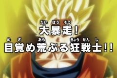 Dragon Ball Super Épisode 99 (21)