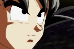 Dragon Ball Super Épisode 99 (11)